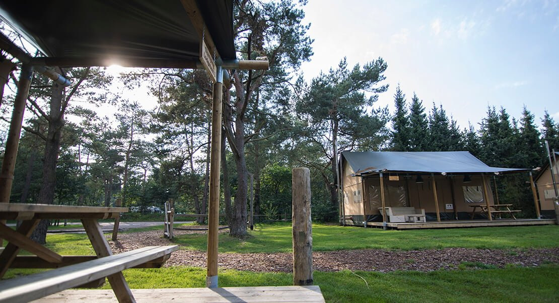 Luxe glamping lodges met sanitair