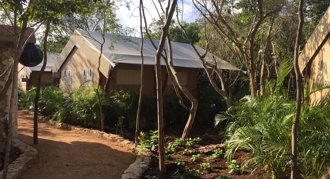 safaritent glamping luxe kamperen